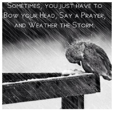 Pray through the Storm